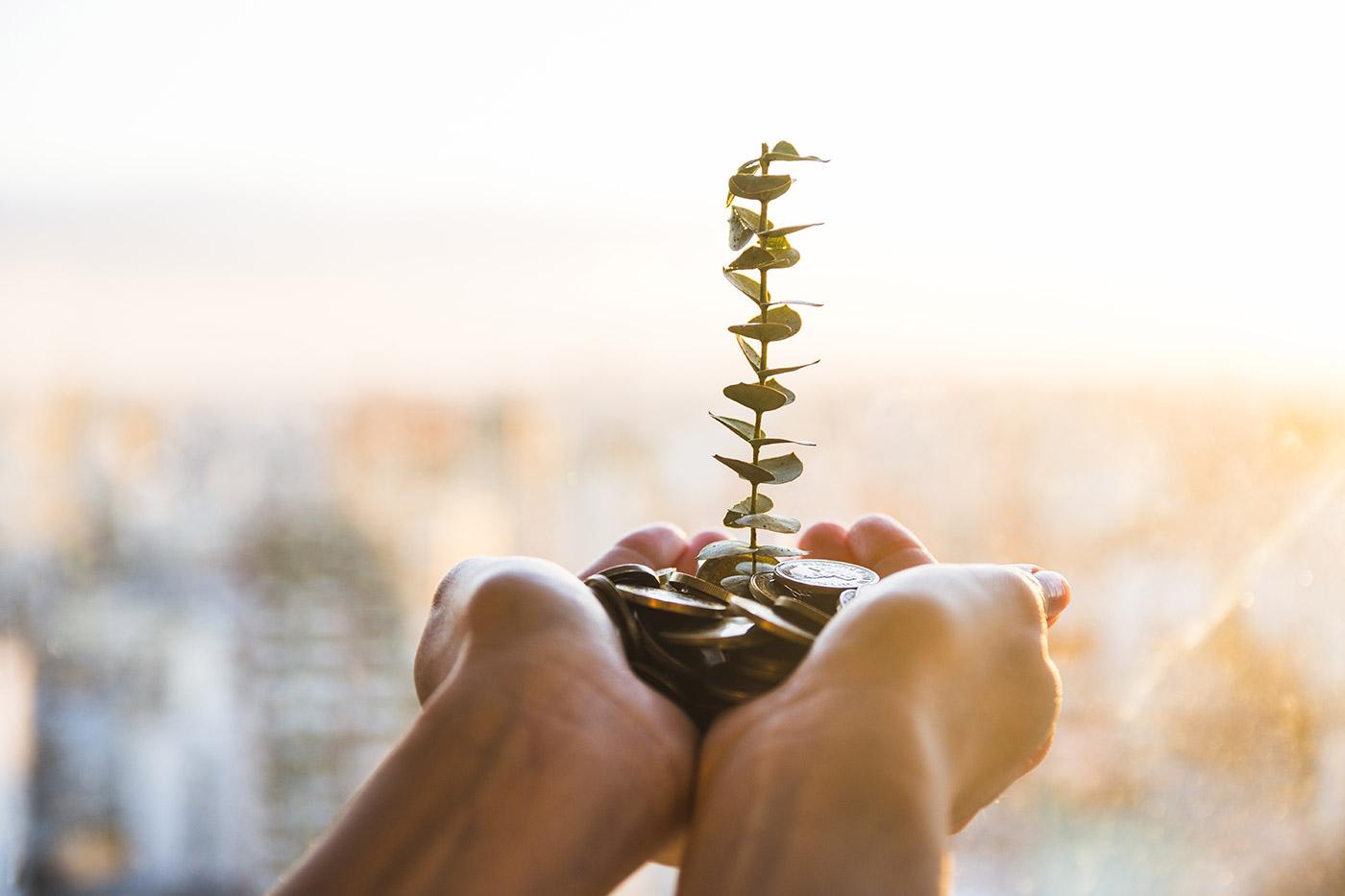 Investimenti green: un trend in forte crescita